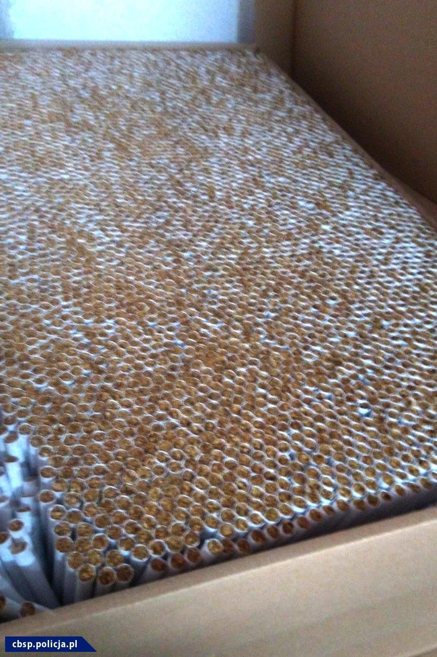 Zbliżenie na kartonowe opakowanie, w którym znajdują się gotowe papierosy.